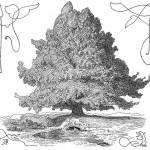 Cây thế giới Yggdrasil (1895) – tranh của Lorenz Frølich